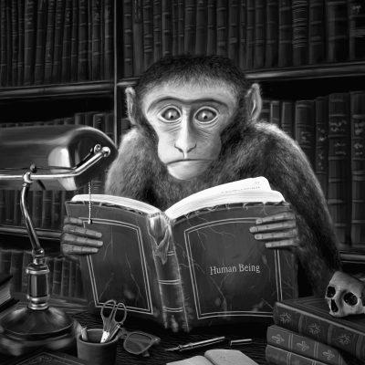 A Wise Monkey